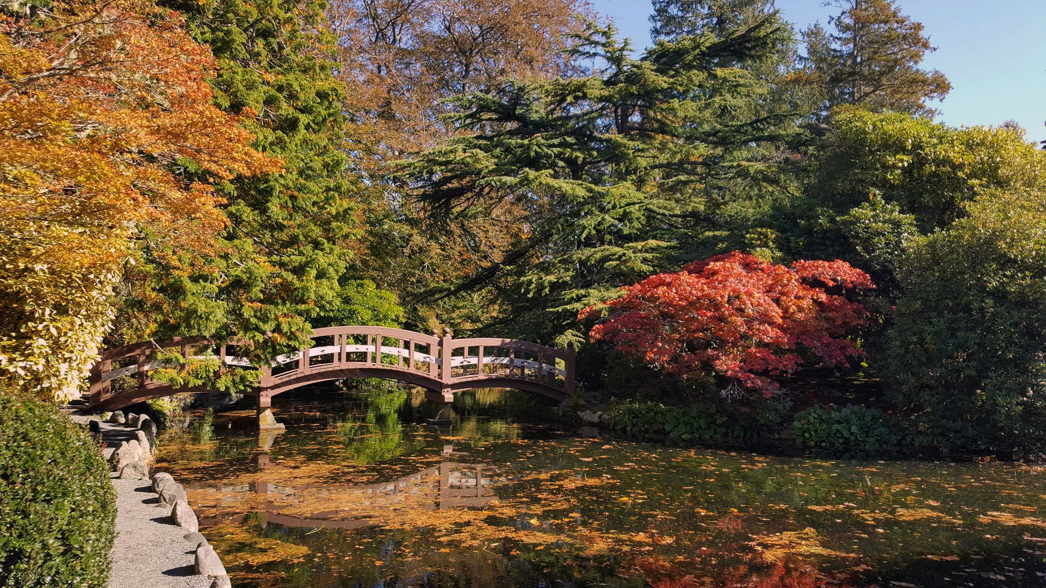 Top 10 Things To Do In Victoria This October Tourism
